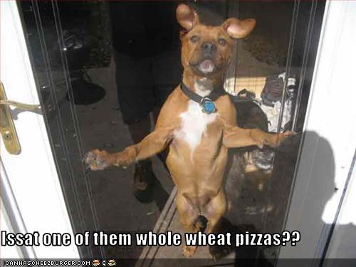 pizza murci