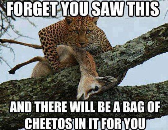 cheetos45