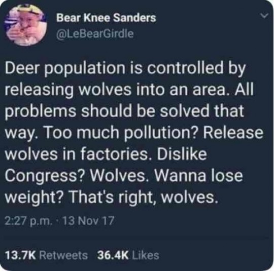 solution wolves