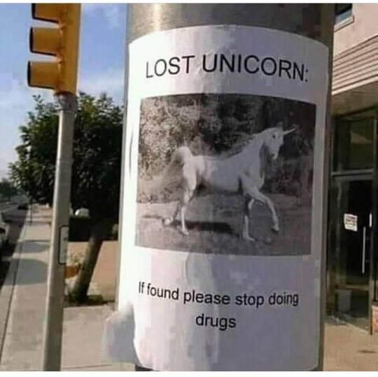 unicorn chasing