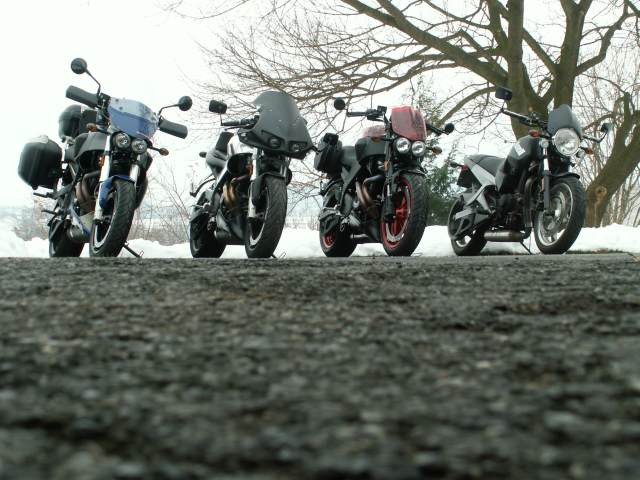 Our Buell's